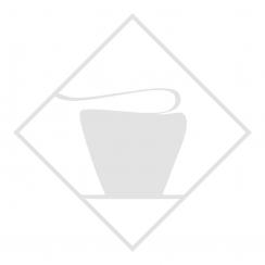 Ягода опунции (ягода кактуса)